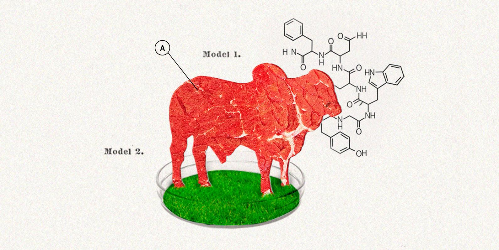 Carne de laboratório e o futuro da indústria de alimentos
