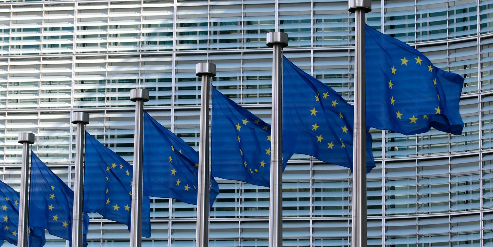 A experiência das autoridades europeias de proteção de dados como um modelo para a ANPD