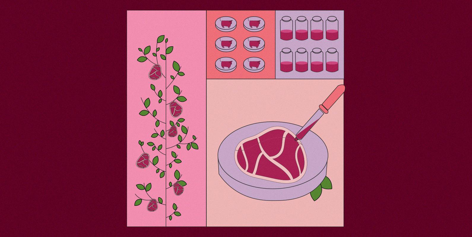 Avanços biotecnológicos impulsionam a carne artificial